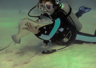 marinebiologist